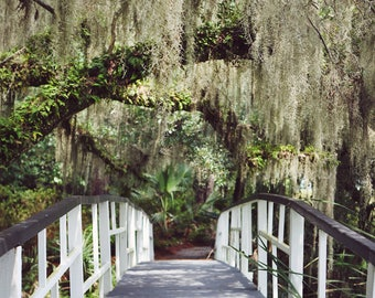 Charleston Art Fine Art Photography, Bridge Photography Vertical, Charleston SC, Charleston Print, Landscape Photogrpahy, Colorful Wall Art