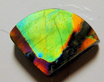 AAA Spectrolite buff top  designer  cab  powerful green wedge  abstract pattern Ylaama Finland  11.5 ct