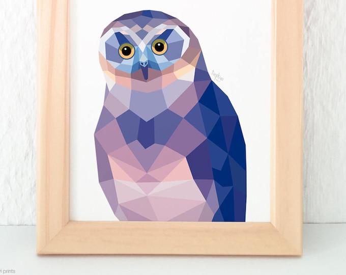 Morepork owl, Ruru owl, Owl illustration, Geometric owl, New Zealand native birds birds, Night birds, Kiwiana, New Zealand animals, Kiwi