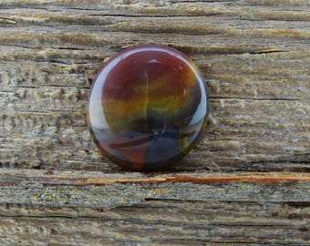 Arizona Petrified Wood Cabochon