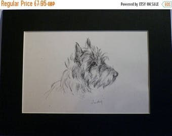 SALE Cairn terrier Vintage mounted 1946 Lucy Dawson Mac Judy Cairn terrier dog plate print Unique birthday, Christmas Xmas dog lover gift