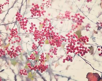 Red Winter Berries, Winterberry, Foliage, Botanical Print, nature print