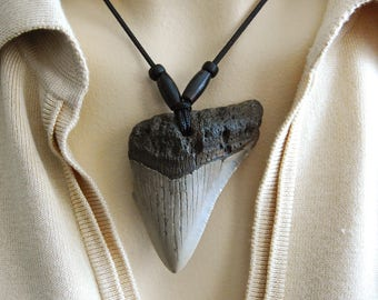 Carcharodon MEGALODON - Fossil SHARK tooth pendant - way tooo COOL !!