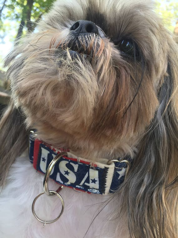 Patriotic Dog Collar,  American Flag Dog Collar, USA Dog Collar, Red, White, and Blue Dog Collar, 4th of July Dog Collar