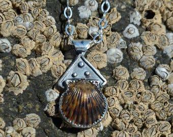 Scallop Keepsake Necklace