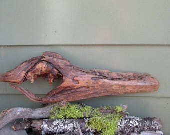Lg. Natural Driftwood Sculpture - Sea Spirit - Driftwood Fish - Lg. Driftwood Piece - Home Decor - Beach Cottage Decor