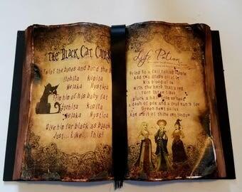 Black Cat Curse and Life Potion Spell Book Hocus Pocus