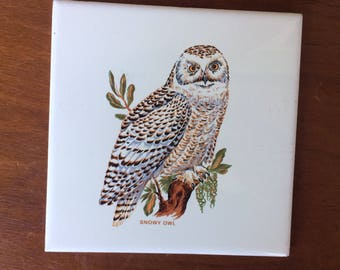 "Retro ""Snowy Owl"" Decorative Tile, 6"""
