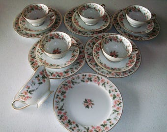 Noritake Rose Garden 17 Piece Set