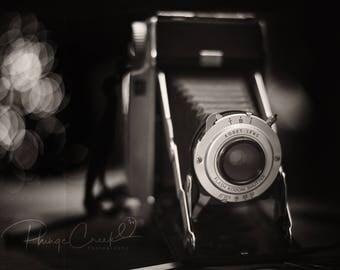 Lights, Camera Action