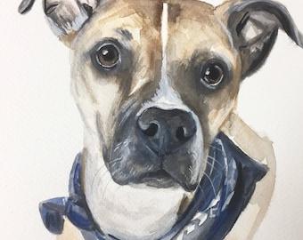 PET PORTRAIT, DOG portrait, dog painting, custom pet painting, painting from picture, dog portrait artist, painting, memorial for dog, cat