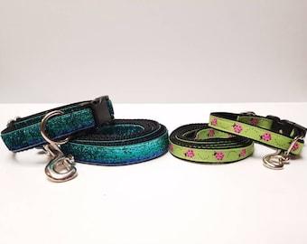 Custom dog collar and leash