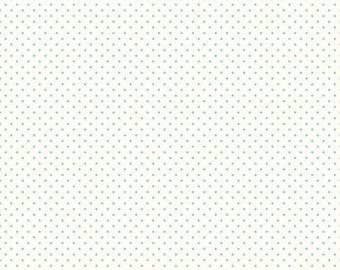 Swiss Dot Aqua by Riley Blake, 1/2 yard, C600-20