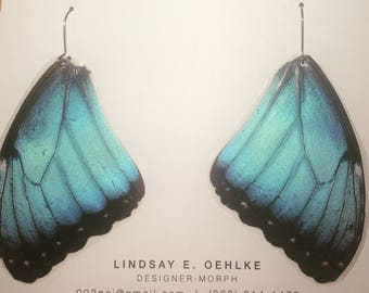 Real Costa Rican butterfly wings: BLUE MORPHOs -- ethically sourced! #1