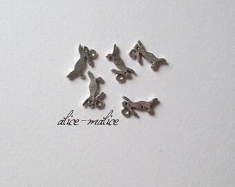 Lot de 5 Breloques métal argenté petit lapin