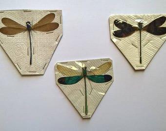 UNMOUNTED 3 x Odonata Mix - Taxidermy - Ready to spread