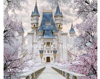 Cinderella Backdrop Etsy