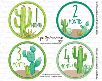 Month by Month Baby Stickers - Cactus Cacti Succulent Theme