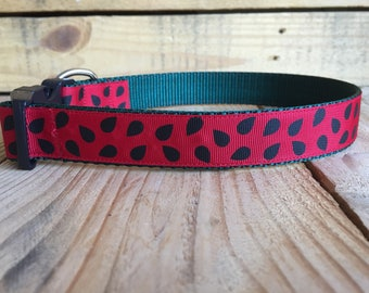 "Watermelon seed dog color, red and black dog collar, summer dog collar, summer dog collar, Quick Release Buckle, 1"" width"