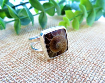 Square Ammonite Fossil Sterling Silver Ring  -  Size 7.5