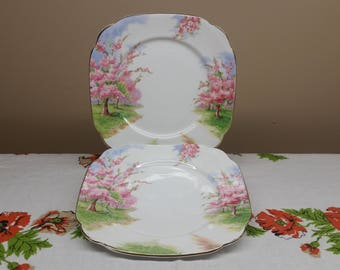 Royal Albert Blossom Time Bread and Butter Plate x2