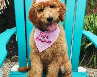 Fetch Happens! Hot Pink Seersucker Bandana || Preppy Dog Scarf Fuchsia Tone on Tone || Puppy Gift by Three Spoiled Dogs