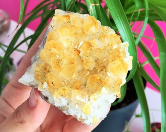 Citrine Crystal Healing Stone Perfect Father Day Gift