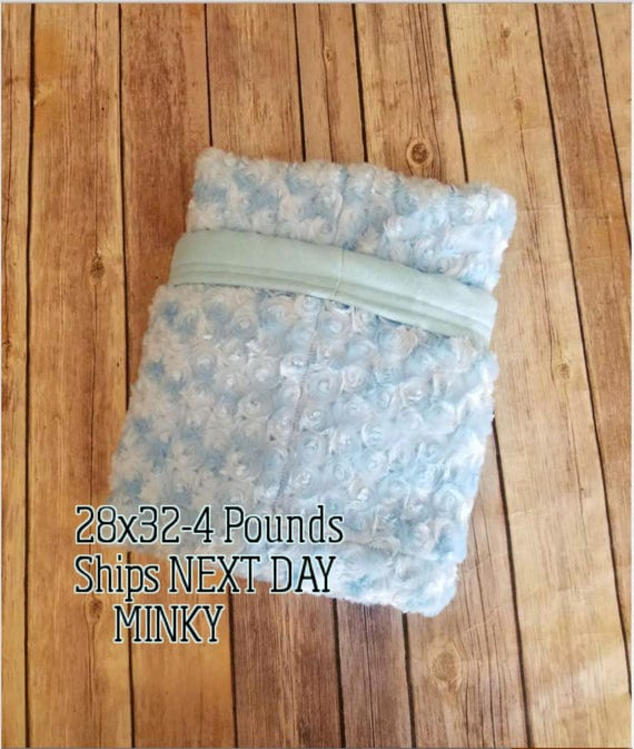 Luxurious Minky, 4 Pound, WEIGHTED BLANKET, Ready To Ship, 4 pounds, 28x32 for Autism, Sensory, ADHD, Calming, Anxiety,