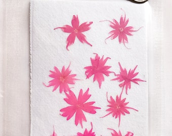 Real Flowers;Star Phlox;Pink Flowers;Small Flowers;Pressed Flowers 10 Real Pressed Flowers;Pressed Flower;Real Pressed Flower;Botanical;