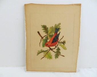 Vintage Scarlet Tanager Red Bird on Oak Tree Theorem 70's B. Novak Unframed