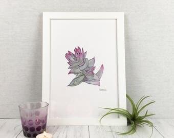 Mothers Day Gift / Succulent Art Print / Wall Art / Botanical Print / Plant Print / Wall Prints / Botanical Art / Cactus Print