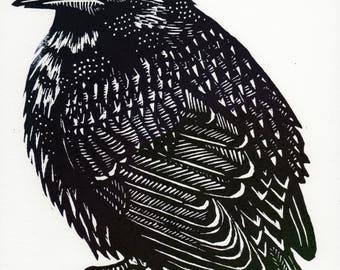 Starling Linocut
