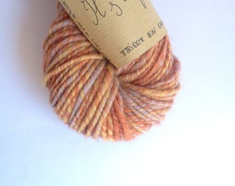 It's a Feast! -Spun and hand dyed Falkland and organic Merino Wool skein