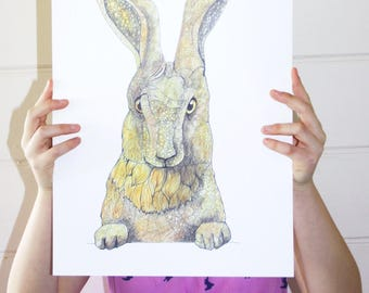 Hare Print / Hare Poster / Nursery Animal Print / Kids Wall Art / Hare and Tortoise  / Hare Art / Animal Illustration / A4 A3 /