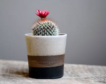 Handmade Planter, Succulent Planter, Ceramic Planter, Spring Planter, Pottery Planter, Mothers Day Gift, Cactus Planter,Modern Planter