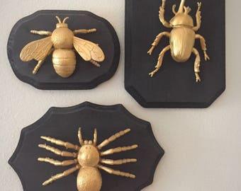 Bug Wall Decor Set