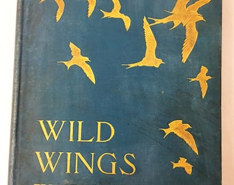 Wild Wings book circa 1905. Adventures of a Camera Hunter Among The Larger Wild Birds of North America on Sea & Land.  Herbert Keightley Job