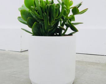 Big white concrete pot, white concrete planter, concrete vase, concrete vessel