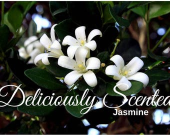 1/2 or 1 oz JASMINE Fragrance Oil for candles, soap, perfume oil, cosmetics, soap making, best, concentrated, pure, skin safe, supply,sample