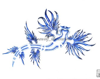Nudibranch art - Nudribranch drawing - Nudibranch painting - Nudibranch print - Sea slug drawing - Sea slug art - sea slug painting