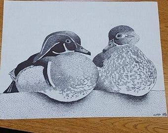 Wood Duck Pointillism