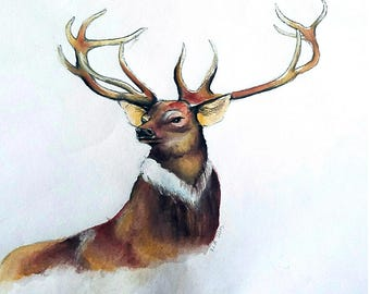 Stag Watercolor - Print 9x12 inch
