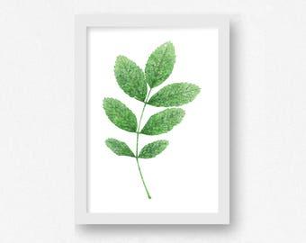 Green Leaf Print, DIGITAL DOWNLOAD, Green Wall Decor, Office Wall Decor, Nature Prints, Botanical Art, Leaf Prints, Botanical Prints, Prints