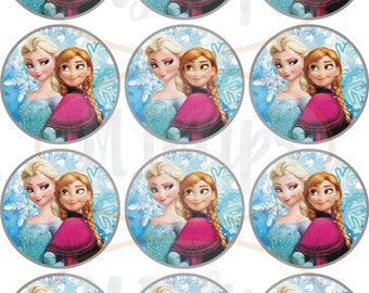 Frozen Elsa & Anna wafer wafer cookie biscuit