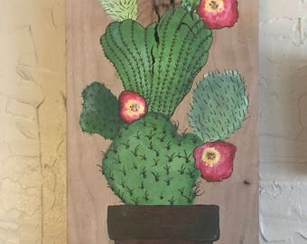Cactus with flowers on wood