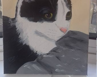 Pet painting Black and White Cat