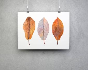 Magnolia Leaves, Botanical Art Print, Nature Illustration, Magnolia Leaves Illustration, Watercolor Nature Art, Botanical Decor, Herbarium