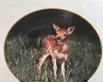 Deer Fawn Plate - Charles Frace Nature's Lovables Collection