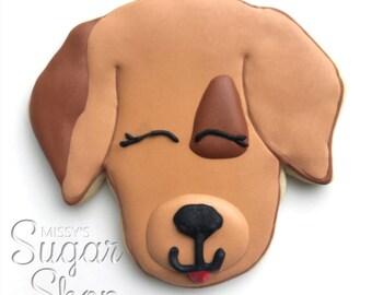 Brown Dog w/Patch