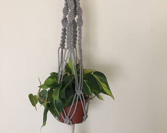 Grey Plant hanger